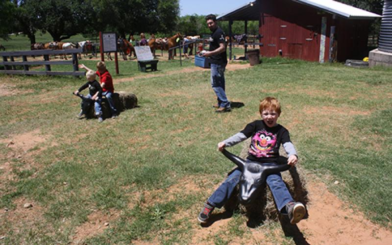 """Little cowboys enjoy  """"riding the bulls"""" while others take a trail ride on horseback at the YMCA Camp Grady Spruce open house Saturday, April 30. Visitors can have a second chance to visit during open house at 10 a.m. to 4 p.m. on Saturday, May 21. The event is open to the public and free for all."""
