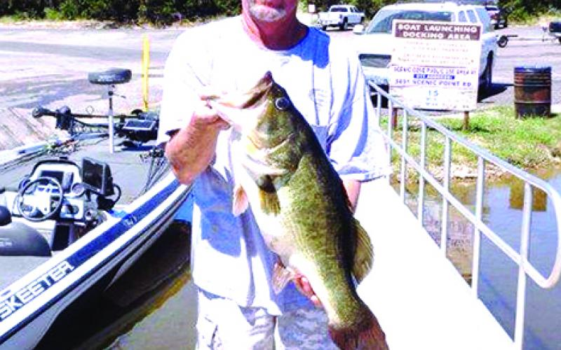 Barry Smith with his 12.18-pound black bass, caught at Possum Kingdom Lake on Sept. 11. After being weighed and measured, the bass was released back into the lake. Courtesy photo