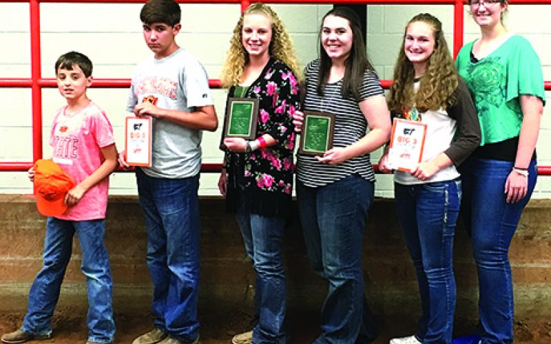 Young County 4-H members who competed in livestock judging at Oklahoma State University's Big Three Field Days include, l-r, Buckley Whitaker, Boomer Whitaker, Phoebe Rogers, Shanna Gleason, Victoria Richards and Amanda Richards. (Courtesy photos)