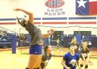 Emily Davis goes up for the kill while Delaney Sullivent, Marleigh Sanders, Nicole King, Jasmine Sims and Baylee Loomis get into defensive position at the Lady Blues' home scrimmage against Bowie Friday morning.
